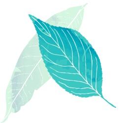rubian - inovacao em residuos bioativos